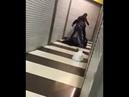 Мужик под звон бутылок наказал бородатый горцев Драка в магазине