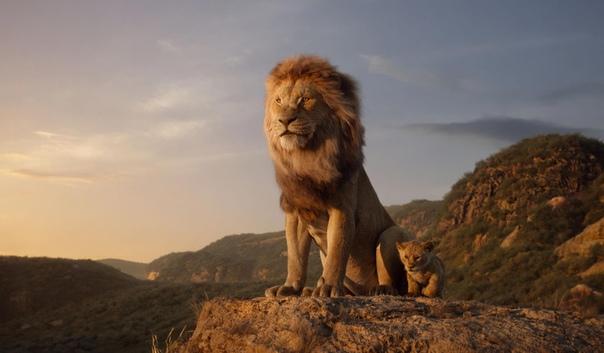 Disney не выдвигал «Короля Льва» на «Золотой глобус» как мультфильм