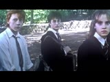 draco malfoy x harry potter vine | drarry