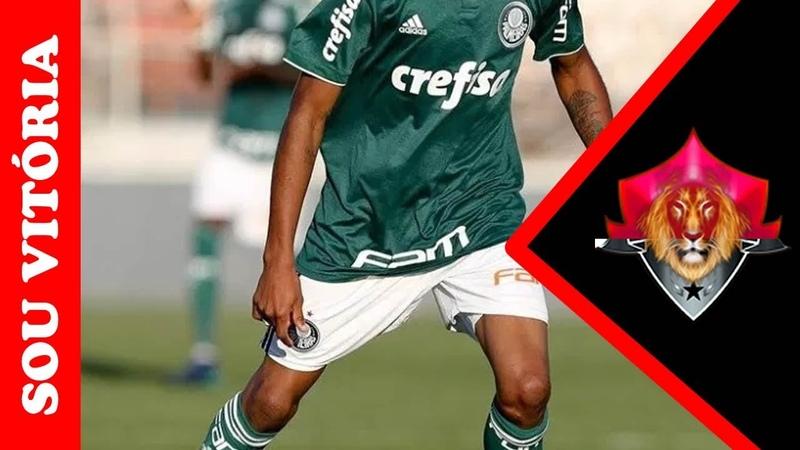 Novo reforço vindo do Palmeiras se apresenta nesta segunda-feira