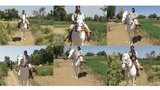 indian village young girl horse riding amazing video