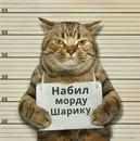 Алла Максимова фото #43