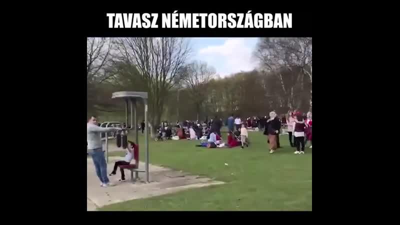Ez az amit nem szeretnénk Magyarországon látni