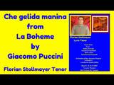 Che gelida manina from La Boheme (Giacomo Puccini) by Florian Stollmayer Tenor (Toronto May 12, 2019)