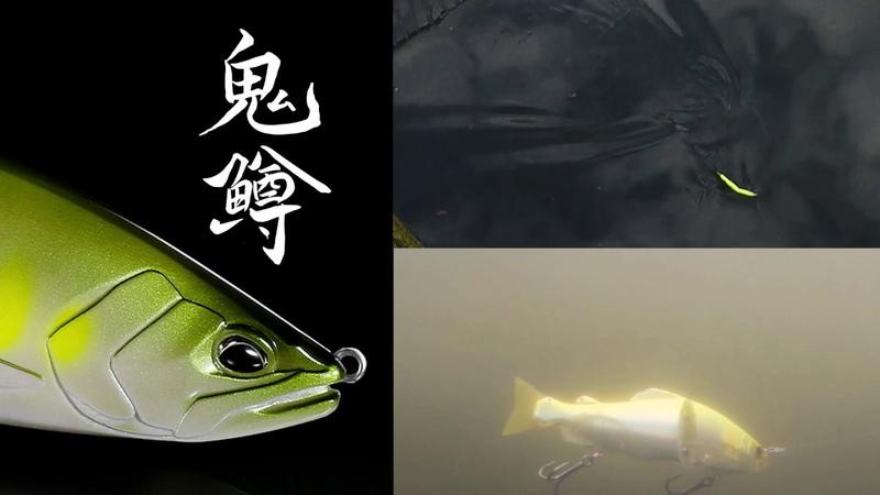 Realis Onimasu`s Glide Action