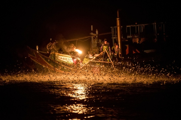 Вместо живца: как ловят рыбу на огонь