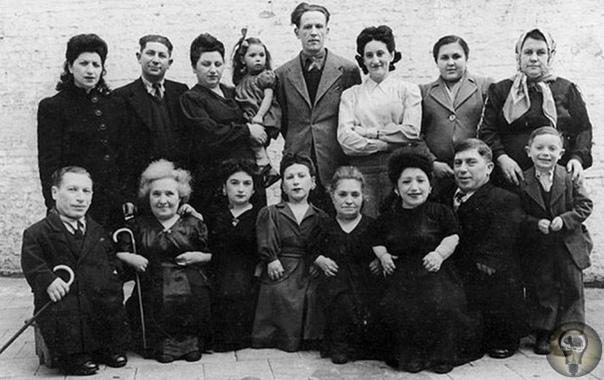Семья Овиц лилипуты из Трансильвании, пережившие Освенцим. Эта история началась в Трансильвании в конце XIX века: в карпатском селе Розавля, что в уезде Марамуреш, жил человек по имени Шимшон