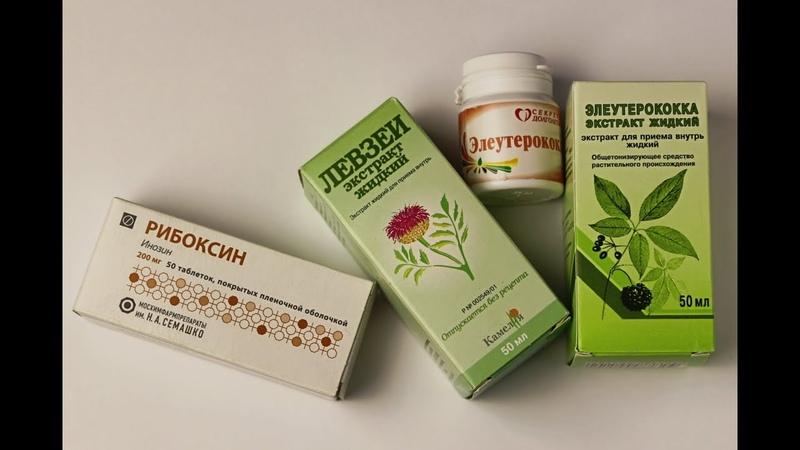 Адаптогены - опыт использования. Элеутерококк, женьшень, левзея, лимонник, аралия, трибулус и другие