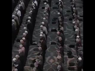 quron_va_qalb+InstaUtility_81e2a.mp4