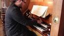 Luke Hayden - Ciacona in E Minor, BuxWV 160 (Buxtehude)