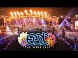 David Guetta Live EDC Las Vegas 2019