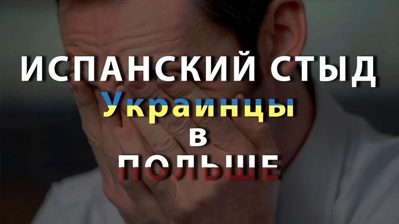 Испанский стыд. Истории из жизни украинцев в Польше.