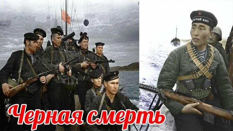 Почему Вермахту стало страшно Новороссийская операция 1943г. военные истории
