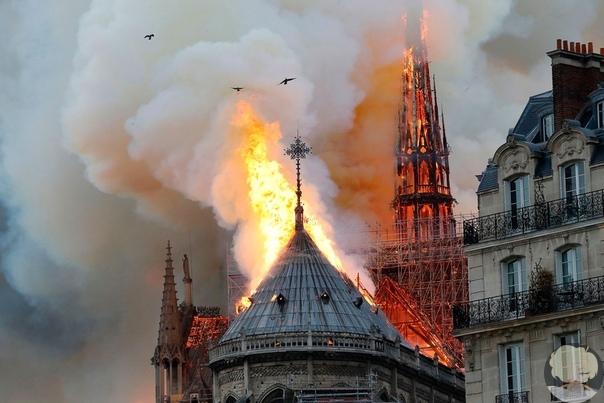 Муж Сальмы Хайек поможет восстановить собор Парижской Богоматери