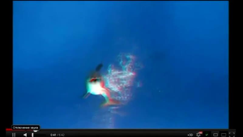 МеДиТаЦиЯ - Звуки Дельфинов / передача информации » Freewka.com - Смотреть онлайн в хорощем качестве