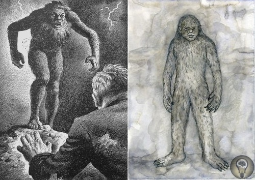 Тайна «серого призрака» Бен-Макдуй
