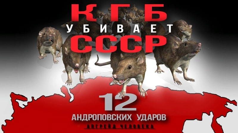 КГБ yбивaeт СССР. 12 андроповских ударов. Апгрейд Человека
