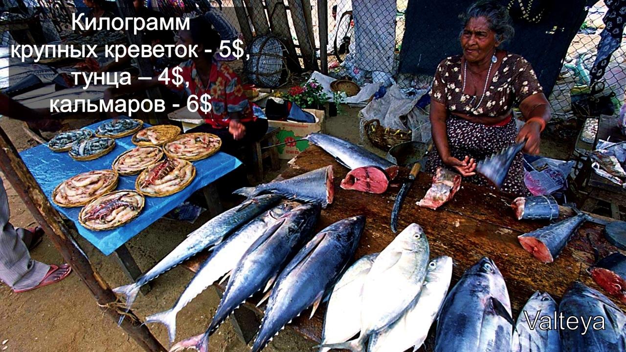 Цены на Шри Ланке 2N9RBYkNQZU