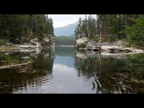 Bindweed Above The Water- Stive Morgan
