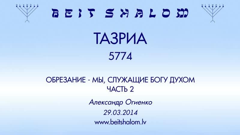 «ТАЗРИА» 5774 ч 2 «ОБРЕЗАНИЕ — МЫ, СЛУЖАЩИЕ БОГУ ДУХОМ» А.Огиенко (29.03.2014)