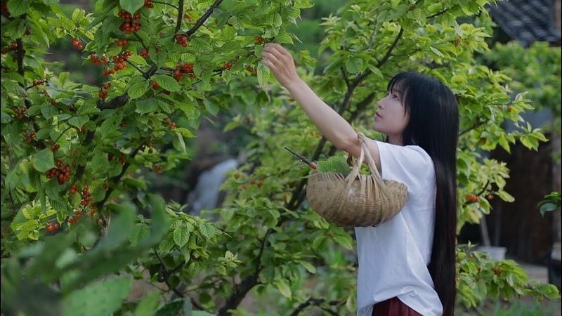 应季甜点,樱桃的花样做法送给你们