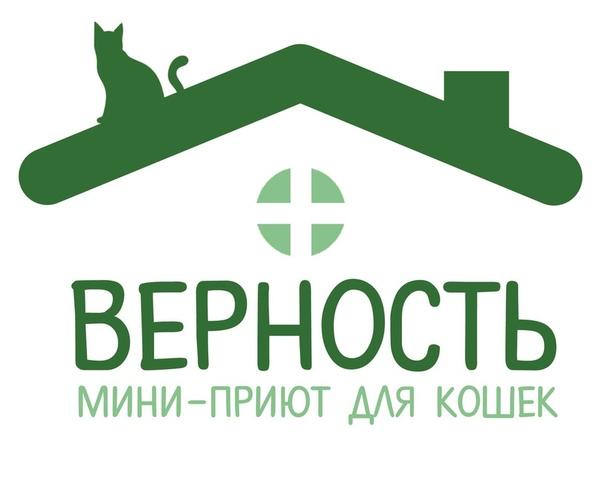 #нужна_финансовая_помощь@vmestepnz_animals #Мини_приют_Верно