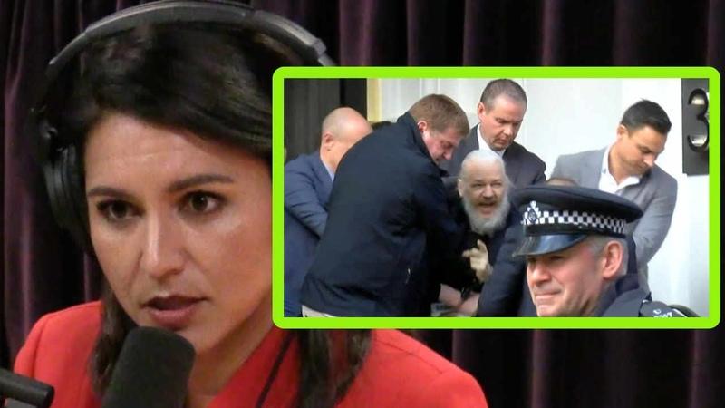 Tulsi Gabbard I'd Drop Charges Against Julian Assange and Edward Snowden Joe Rogan