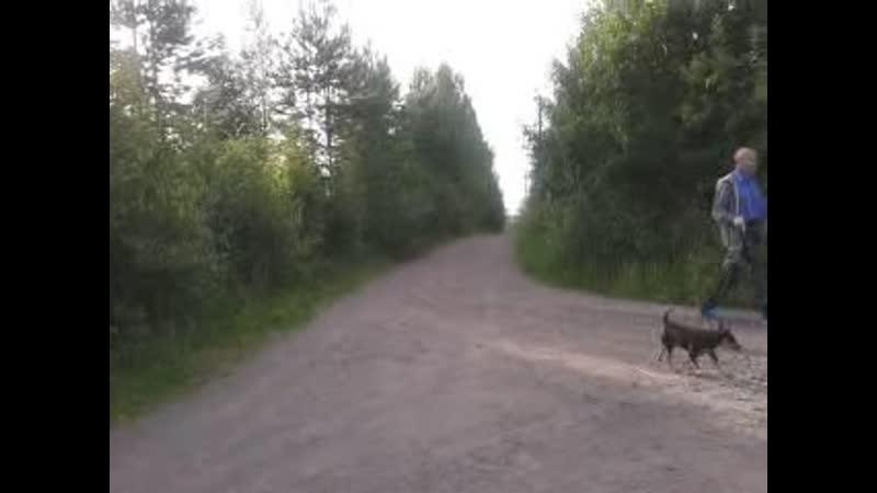 Sergei 2012-01-06-06-33-4