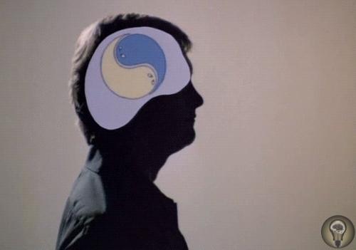 Эксперимент Вегнера В 1987 году Дэниел Вегнер с соавторами опубликовал статью «Парадоксальные эффекты подавления мыслей» (Paradoxical effects of thought suppression). В ней приводились данные,