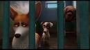 Королевский корги The Queen's Corgi 2019 Мультфильм Русский трейлер №2