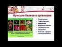 Аминокислоты PROSHAPE Amino FitLine 2