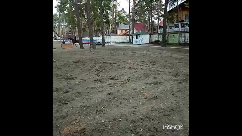 Прыжковая тренировка 🏇💨