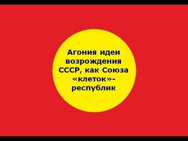 Агония идеи возрождения СССР, как союза «клеток»-республик