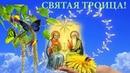 Святая Троица! Красивые поздравления со Святой Троицей! Музыкальная открытка.