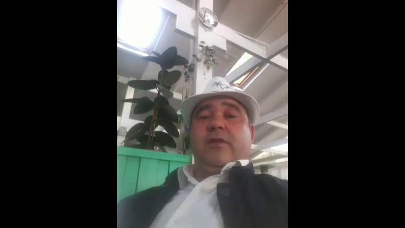 Михай Раман Live