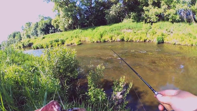 Река ПОРАЖАЕТ красотой Да и РЫБА в ней есть Norstream Provokator 612L