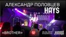 Александр Половцев (HAYS) - Brother (Live, Владивосток, 25.06.2019)