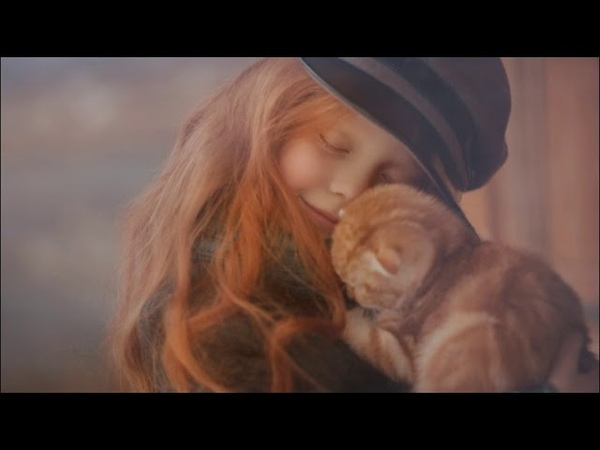 ЧТО ГОВОРИТ О КОШКЕ ЕЕ ОКРАС Цвет кошки и характер Character of the cat by the color of the wool