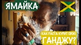 Как Раста курит свою ганджу Ямайка Weed Empire