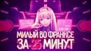 МИЛЫЙ ВО ФРАНКСЕ ЗА 25 МИНУТ Darling in the FranXX
