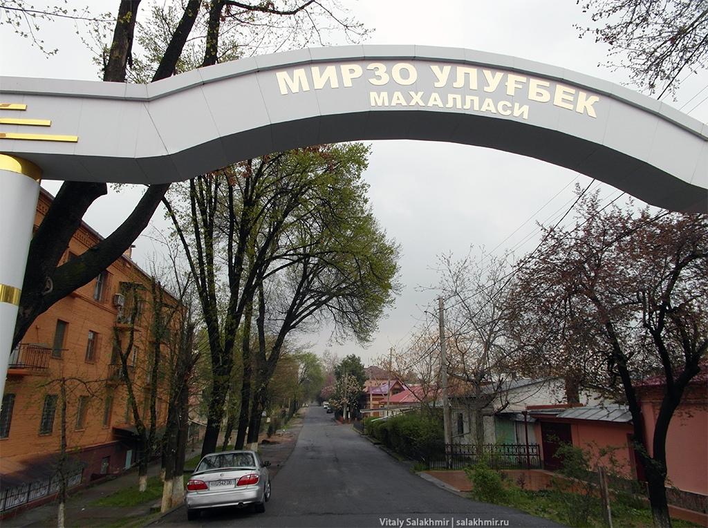 Улугбекский район в Ташкенте, 2019