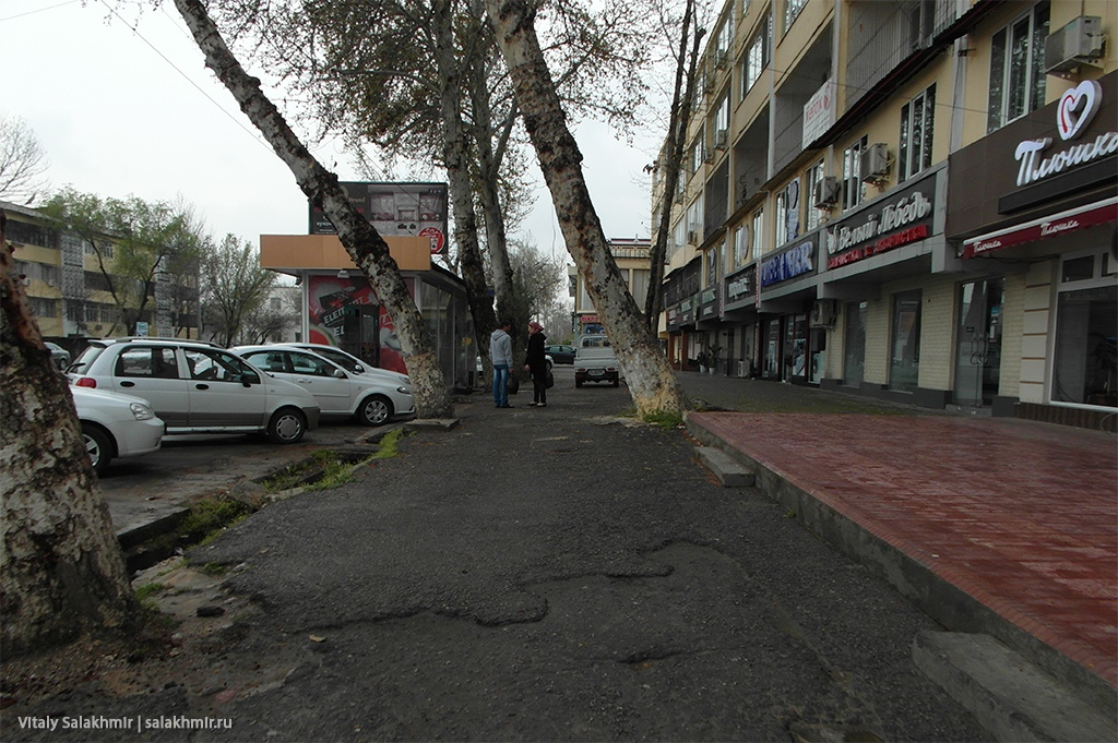 Улица в Ташкенте, 2019