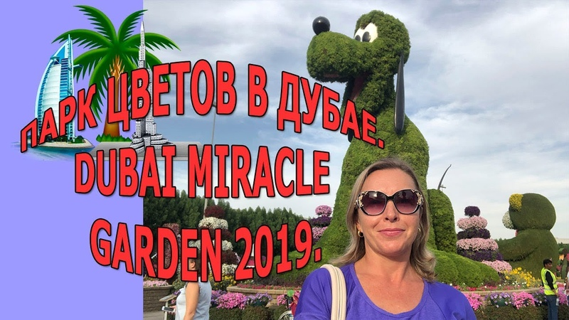 Парк цветов в Дубае 2019 Miracle Garden Dubai 2019