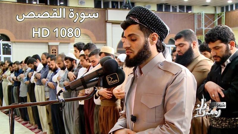 رعد محمد الكردي سورة القصص كاملة Раад альКурдий сура Рассказ