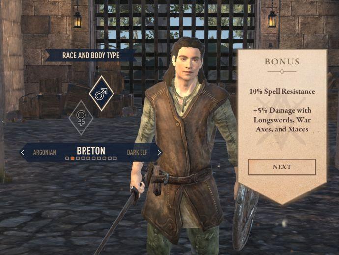 Бретонцы в The Elder Scrolls Blades