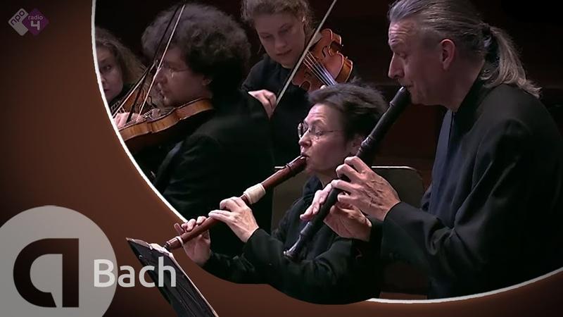 Bach: Brandenburg Concerto No.4, BWV 1049 - Concerto Köln, Cordula Breuer and Wolfgang Dey - Live HD
