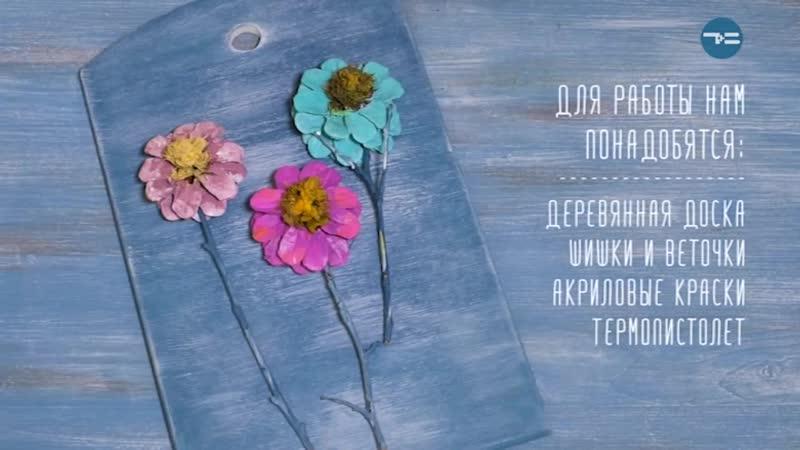 Панно из шишек - «Утро с Вами» 21.03.2019