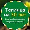 Усиленные теплицы ВОЛНА и ВИТА в Нижнем Новгород