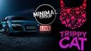 TRIPPY CAT X MINIMAL GROUP ELECTRO MINIMAL TECHNO 0 24 LIVE STREAM