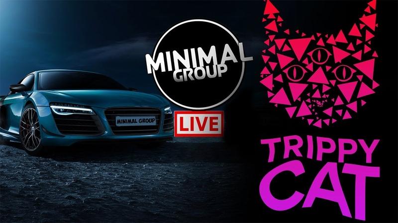 • TRIPPY CAT X MINIMAL GROUP • ELECTRO MINIMAL TECHNO 0-24 LIVE STREAM